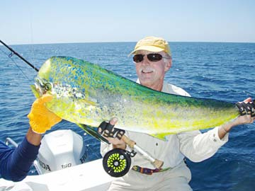 Dorado fiesta fishing for baja sur boats big tuna season for Cabo san lucas fishing season
