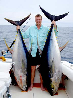 Dorado fiesta fishing for Baja Sur boats, big tuna season at